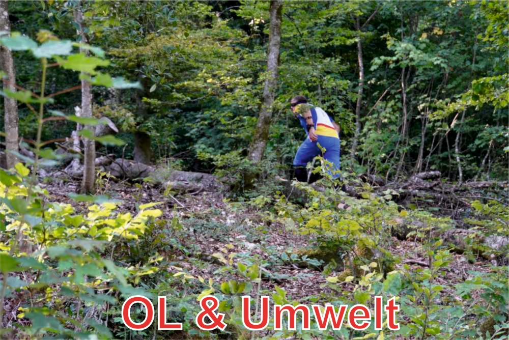 OL & Umwelt